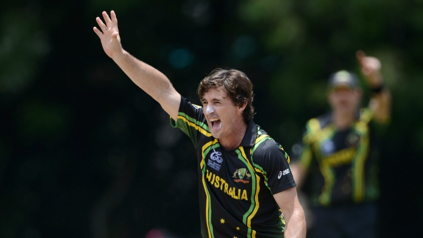 Brad Hogg urges Australia to start planning now for next Cricket World Cup